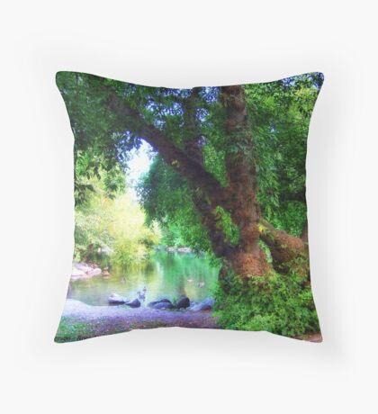Woodland Park Pond Throw Pillow