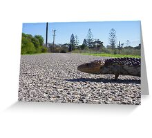 Bobtail Crossing Road Greeting Card