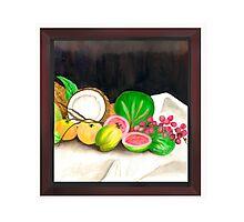 Puertorican Beach Grapes Plus Fruit Friends Photographic Print