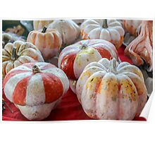 decorated pumpkins Poster