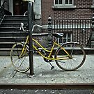 Yellow Bike by Steve Edwards
