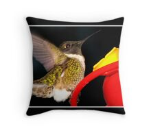 Incoming! (Ruby-Throated Hummingbird) Throw Pillow