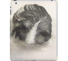 Cute Guinea Pig Painting  iPad Case/Skin