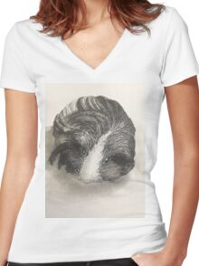 Cute Guinea Pig Painting  Women's Fitted V-Neck T-Shirt