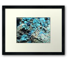 The Hidden Land – The Reef Framed Print