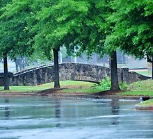 Rainy Day Cleveland Park by Roger Jewell