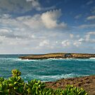 La'ie Point Sea Arch by Dan Mihai