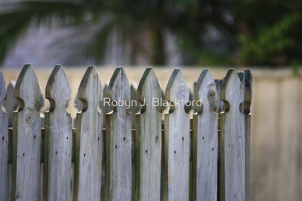 Picket Fence by aussiebushstick