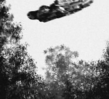 Believe - Falcon by TheArtofScott