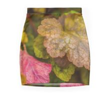 Heuchera Green Spice Mini Skirt