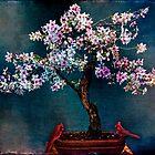 SAKURA BONSAI by Chris Lord