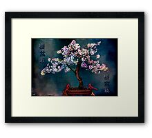 SAKURA BONSAI Framed Print