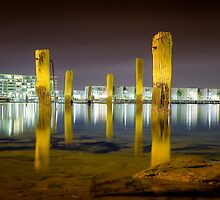 Pylons Panorama by Shannon Rogers