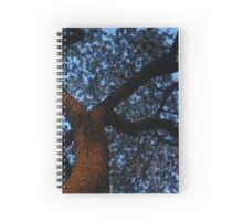 Blooming Tree at Night Spiral Notebook