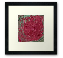 Red Seedhead Abstract Framed Print