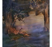 Fantasy Forest 4 Photographic Print