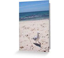 Seagull Dancing Greeting Card