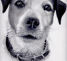 Victor, Graphite on paper. by jan farthing