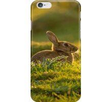 Wild Rabbit I Am Magnificent iPhone Case/Skin