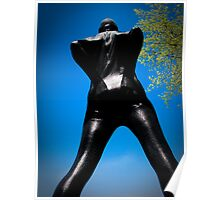 Black Snakeskin Zentai in the Field 3-4 Poster