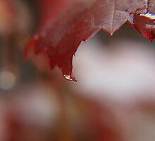 liquid tipped crimson... by byzantinehalo