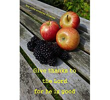 Psalm 136:1 His love endures forever - brambles and apples Photographic Print