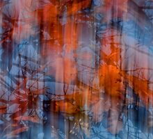 Flaming Fall by Gerda Grice