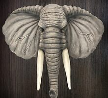 Elephant Head Mount by Walter Colvin