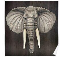 Elephant Head Mount Poster