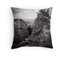 Ice Age Aztec Dreaming Throw Pillow