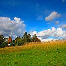 landscape meadow and sky by Medeu
