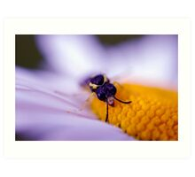 Buzz Off This is Mine! Art Print