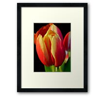 Up Close ©  Framed Print