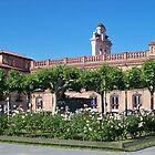 Stork nest, Cervantes Plaza, Alcala de Henares, Madrid, Spain by MONIGABI