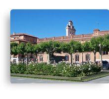 Stork nest, Cervantes Plaza, Alcala de Henares, Madrid, Spain Canvas Print