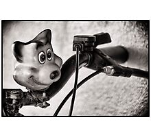 Teddy Bell Photographic Print