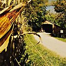 Corn & Covered Bridges....Thats Indiana by Grinch/R. Pross