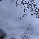 Dark Sky by DeeLishess