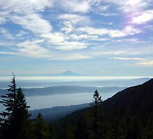Mt Rainer from Mt Walker by mrscaer