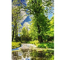 Autumn in the Park painting, oil painting, nature 1 Photographic Print