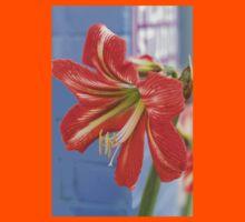 Tania's Happy Hippy plants - Hippeastrum Kids Tee