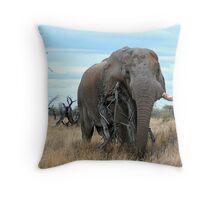 Olifant - Etosha Nasionale Park Throw Pillow