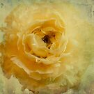 Ruffled Petticoats by Suzanne Cummings