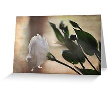 Lisianthus Greeting Card