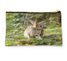 Cute Wild Leveret a Little Itch Studio Pouch