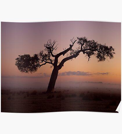 """Rural Mist At Sunrise"" Poster"
