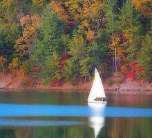 Lake Sailing by James Brotherton