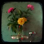 Peonies &amp; Roses - Still Life TTV by Kitsmumma