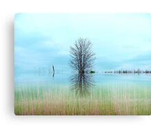 The Marsh ! Metal Print