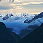 fox glacier  south westland  nz by rina  thompson